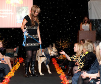 16 Nov 2013 Canines on the catwalk