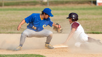 Camden-Wyoming vs Milford Little League